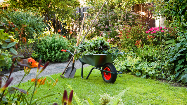 Local Gardening and Landscaping Services