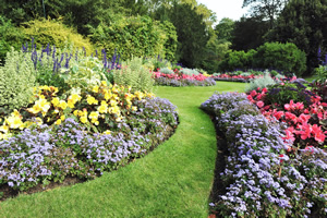 Local Flower Planting Design Services
